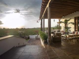 Hacienda Queirolo
