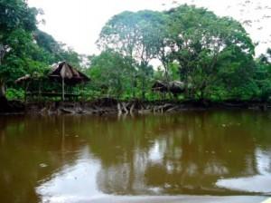 Tief im Orinoco Delta 2