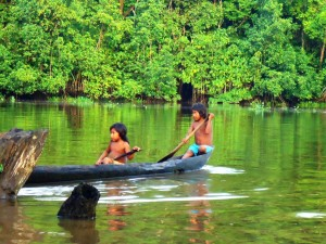 Tief im Orinoco Delta 3