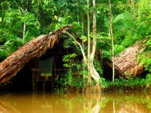 Tief im Orinoco Delta 1