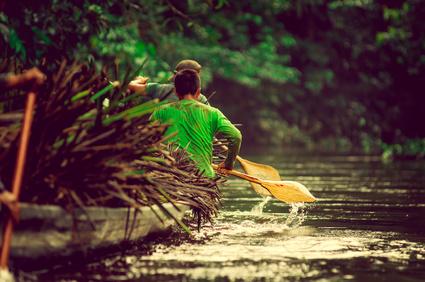 Amazonas Reisen Literatur