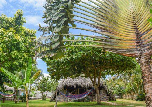 Karibik Unterkünfte 16