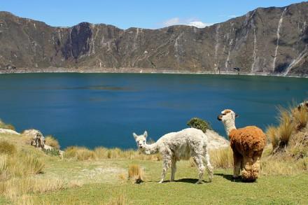 Südamerika Reise Ecuador
