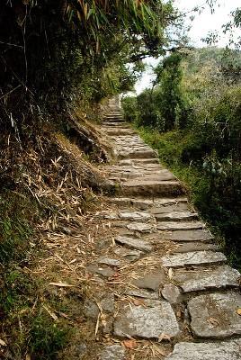 10 Tage Peru Rundreise-Machu Picchu und Manu Nationalpark 16