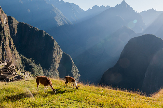 Inka Trail in Peru 5