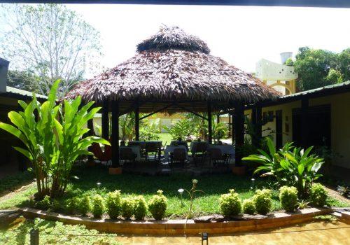 Amazonas-Die grüne Wüste 5