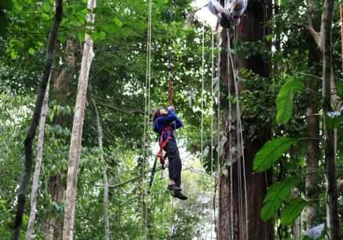 Amazonas-Die grüne Wüste 12