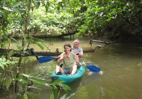 Amazonas-Die grüne Wüste 10