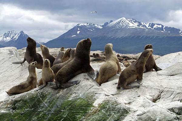Natur Wunder von Argentinien 11