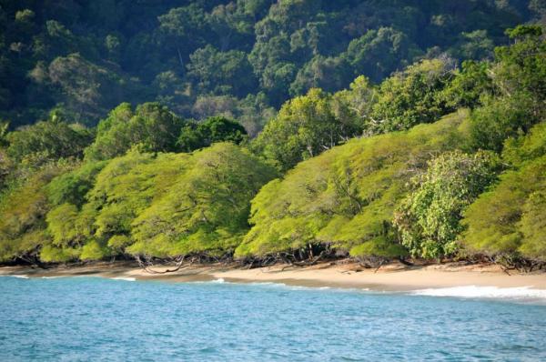 Costa Rica Mietwagen-Komfortreise 9